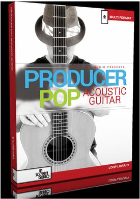 Lowdown Groove Guitar