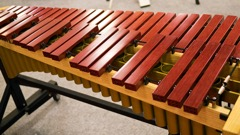 Tuned Percussion Samples - Xylophone